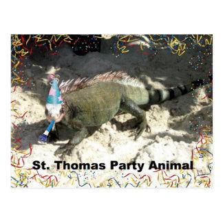 Cartão Postal Animal de partido de St Thomas!