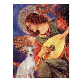 Cartão Postal Anjo do bandolim - - galgo italiano 7