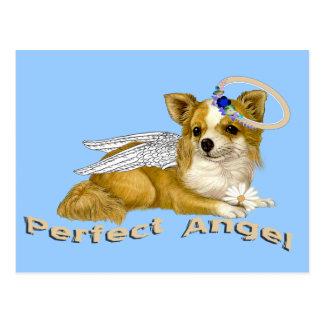 Cartão Postal Anjo perfeito da chihuahua