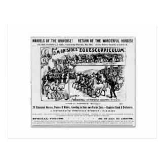 Cartão Postal Anúncio de Equescurriculum de D.M. Bristol