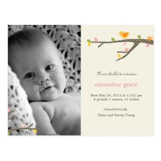 Cartão Postal Anúncio doce do nascimento do bebê do passarinho