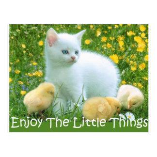 Cartão Postal Aprecie os animais bonitos das coisas pequenas