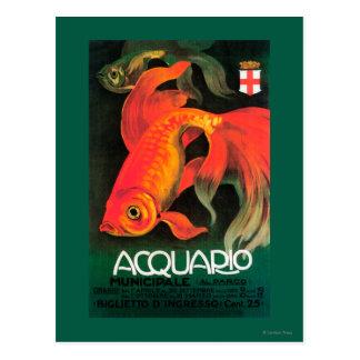 Cartão Postal Aquário & poster do promocional do parque
