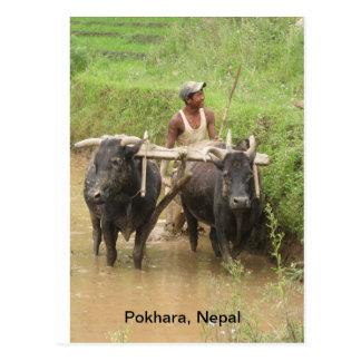 Cartão Postal Aradura em Pokhara
