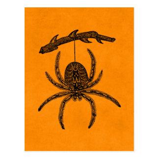 Cartão Postal Aranhas alaranjadas do fundo da aranha do Dia das