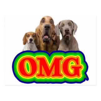 Cartão Postal Arco-íris de OMG com cães surpreendidos!