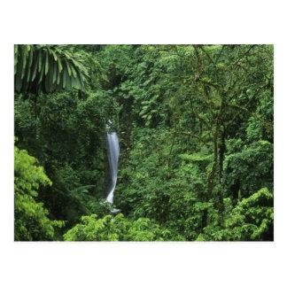 Cartão Postal Área do vulcão de Costa Rica, Arenal, pontes de