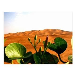Cartão Postal Areia e flores em Dubai, United Arab Emirates