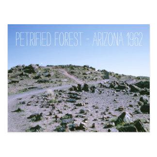 Cartão Postal Arizona 1962 da floresta Petrified