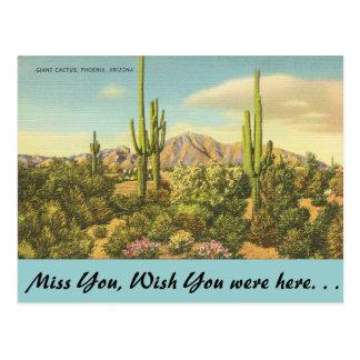 Cartão Postal Arizona, cacto gigante