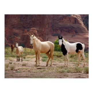 Cartão Postal Arizona, reserva indígena do Navajo, Chinle,