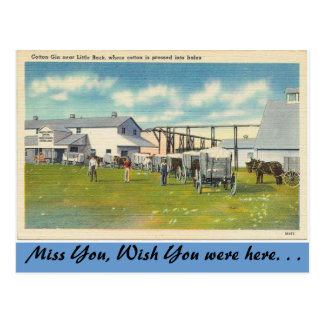 Cartão Postal Arkansas, gim de algodão