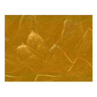 Cartão Postal Arte artística DOURADA da folha de ouro de LOTUS