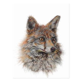 Cartão Postal arte da cara da raposa vermelha