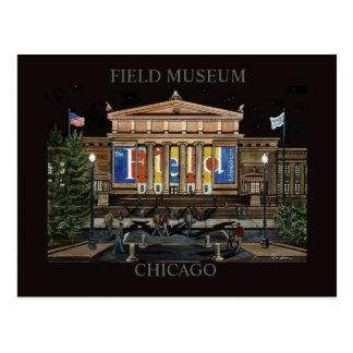 Cartão Postal Arte de Chicago Randsom do museu do campo