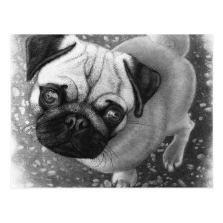 Cartão Postal Arte do cão de filhote de cachorro do Pug