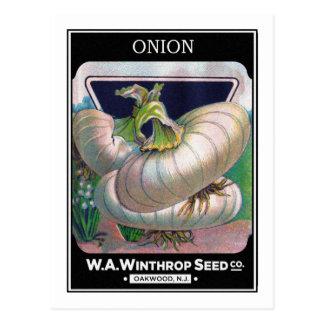 Cartão Postal Arte do vegetal do pacote da semente da cebola do