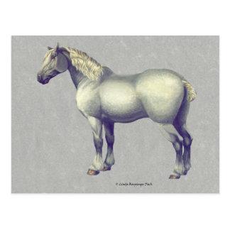 Cartão Postal Arte eqüino do cavalo de Percheron