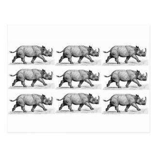 Cartão Postal Arte Running dos Rhinos