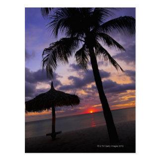Cartão Postal Aruba, silhueta da palmeira e do palapa