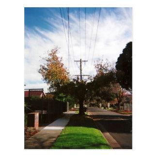 Cartão Postal árvore