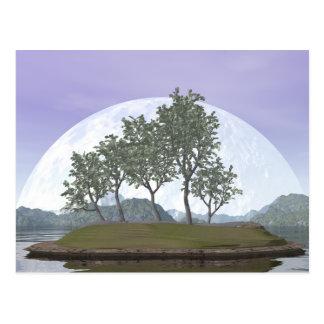 Cartão Postal Árvore com folhas lisa dos bonsais do olmo - 3D
