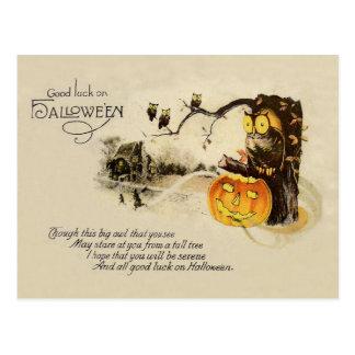 Cartão Postal Árvore da abóbora da lanterna de Jack O da coruja