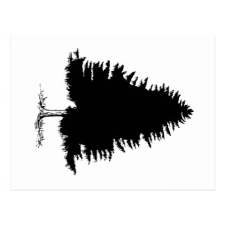 Cartão Postal Árvore de abeto