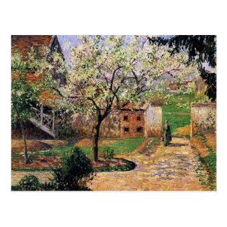 Cartão Postal Árvore de ameixa de florescência de Camilo
