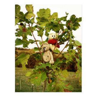 Cartão Postal Árvore de escalada de Frank&Lennart