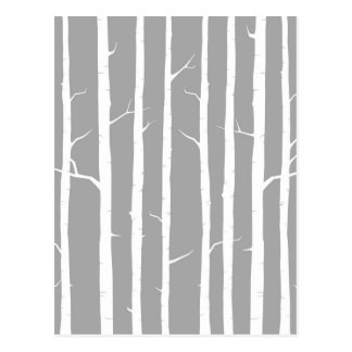 Cartão Postal Árvore de vidoeiro cinzento e branco