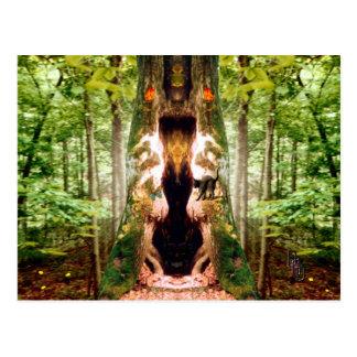 Cartão Postal Árvore do Totem