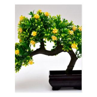 Cartão Postal Árvore dos bonsais