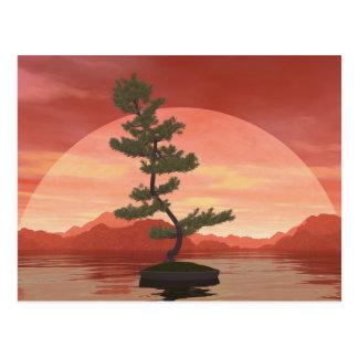 Cartão Postal Árvore dos bonsais do pinho escocês - 3D rendem