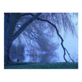 Cartão Postal Árvore e lago do inverno