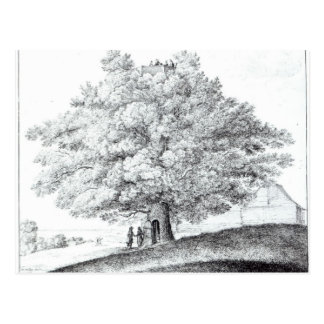 Cartão Postal Árvore oca em Hampstead, 1663