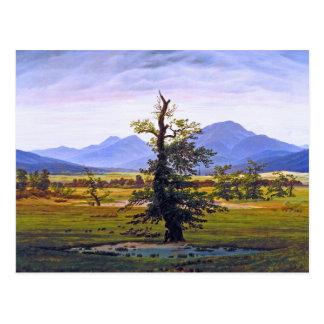 Cartão Postal Árvore solitária - por Caspar David Friedrich
