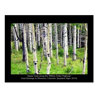 Cartão Postal Árvores de Colorado Aspen