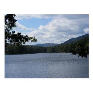 Cartão Postal árvores do lago de Pensilvânia do parque estadual