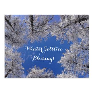 Cartão Postal Árvores e céu do inverno das bênçãos do solstício