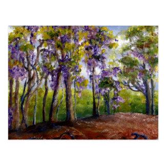 Cartão Postal Árvores e glicínias de Louisiana