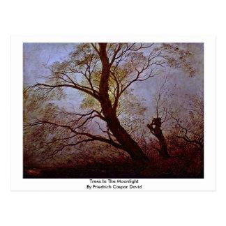 Cartão Postal Árvores no luar por Friedrich Caspar David