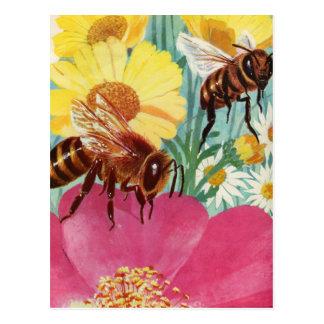 Cartão Postal as abelhas fazem o mel