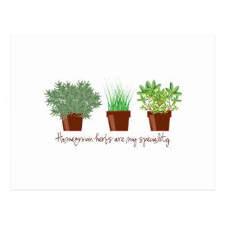 Cartão Postal As ervas caseiros são minha especialidade