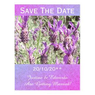 Cartão Postal As flores da lavanda francesa personalizadas