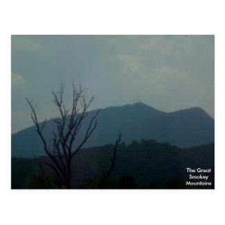 Cartão Postal As grandes montanhas de Smokey