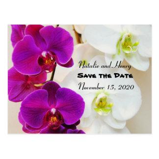 Cartão Postal As orquídeas tropicais salvar a data