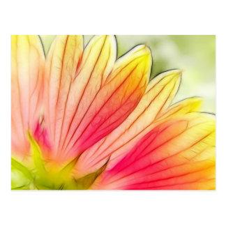 Cartão Postal As pétalas da flor geral fecham-se acima