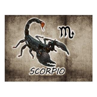 Cartão Postal astrologia 2017 do scorpio