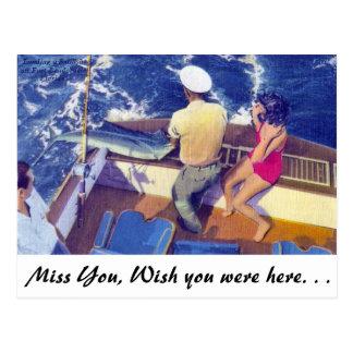 Cartão Postal Aterrando um Sailfish